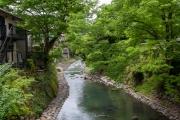 桂川とも呼ばれる修善寺川