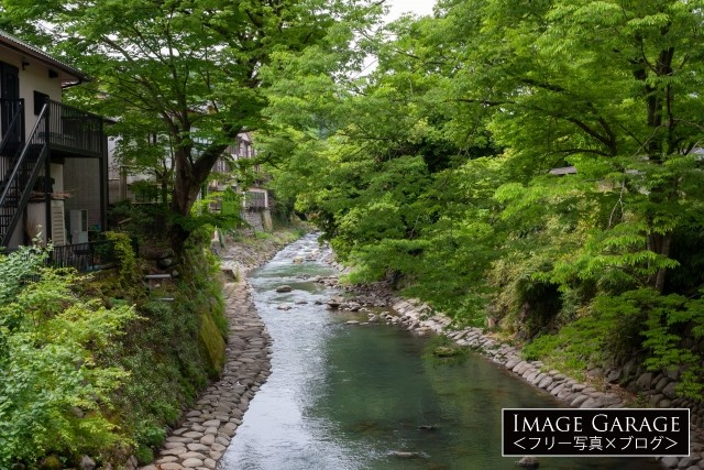 桂川とも呼ばれる修善寺川のフリー素材写真(無料)
