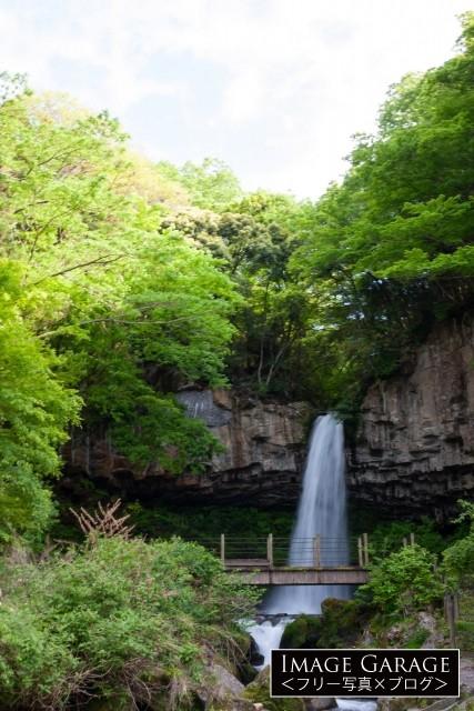 中伊豆の萬城の滝(引き)の無料写真