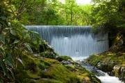 中伊豆のカーテン滝