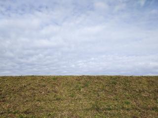 下から見た川の土手とうろこ雲の空