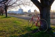 クロモリフレームの自転車