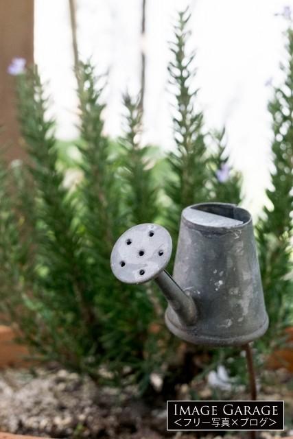 ブリキの小物・じょうろのガーデンオーナメントのフリー写真素材