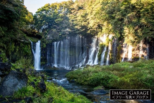 崖から水が直接流れ落ちる富士宮の白糸の滝のフリー素材写真(無料)