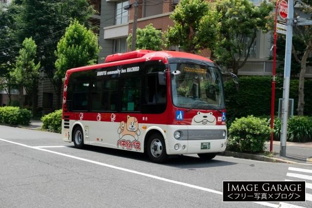 恵比寿を走る、2代目・ハチ公バスのフリー素材写真(無料)