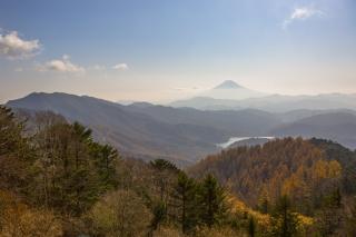 大菩薩嶺・唐松尾根から眺める富士山