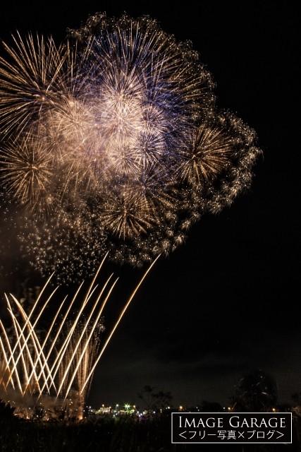 線香花火のような打ち上げ花火・川崎市制記念多摩川花火大会のフリー素材写真(無料)