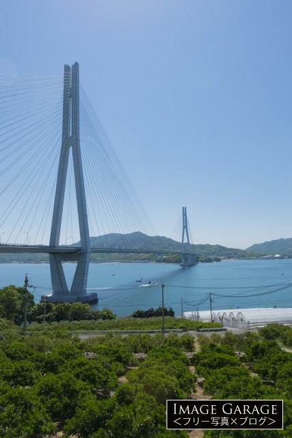 広島県尾道市側から見た多々羅大橋のフリー素材写真(無料)