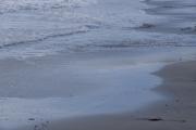 千倉の海岸の波打ち際