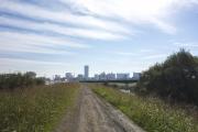 鶴見川サイクリングコース・新横浜・小机付近の砂利道