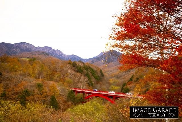 東沢大橋展望台(赤い橋)・清里の紅葉のフリー素材写真(無料)