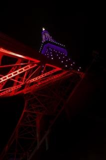 秋草色にライトアップされた9月の東京タワー