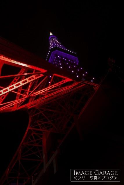秋草色にライトアップされた9月の東京タワーのフリー素材写真(無料)