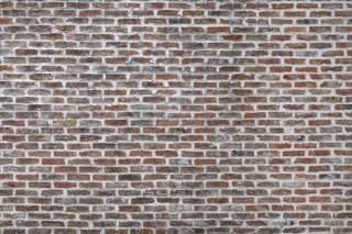 おしゃれな雰囲気のレンガの壁