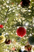 キラキラのクリスマスツリーのアップ