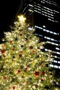 2015年恵比寿ガーデンプレイスのクリスマスツリー