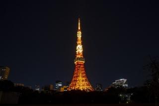 東京タワー・ランドマークライト(冬バージョン)