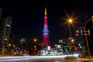 赤羽橋から見た11月・紅葉色の東京タワー