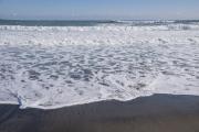千葉県の海岸の波打ち際