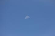昼間の青空に浮かぶ月