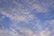 複雑な模様のうろこ雲