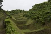 山中城跡の障子堀