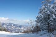 パルコールつま恋スキー場の樹氷のプレストコース