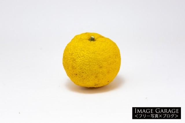 柚子のフリー写真素材(無料)