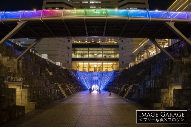 ヨコハマミライト・ドッグヤードガーデンのイルミネーションのフリー写真素材(無料)