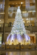 ランドマークタワーのクリスマスツリー2020
