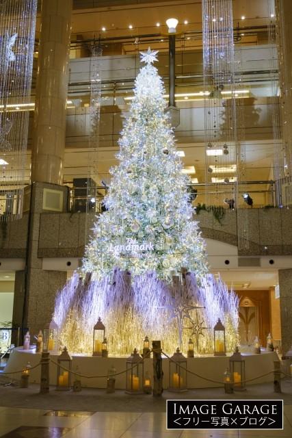 ランドマークタワーのクリスマスツリー2020のフリー写真素材(無料)