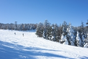 広々としているパルコールつま恋スキー場
