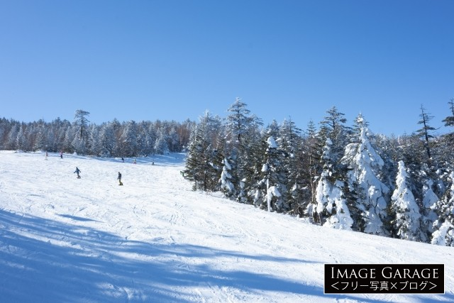 広々としているパルコールつま恋スキー場のフリー画像(無料写真素材)