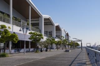 横浜ベイサイドマリーナのウッドデッキ