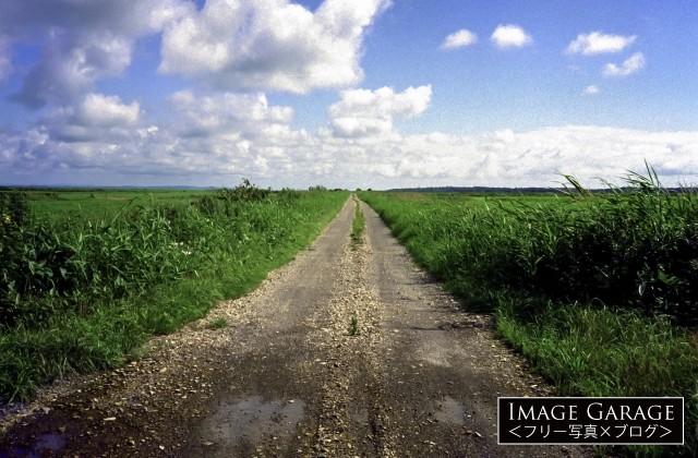 北海道のどこまでも続く砂利道のフリー画像(無料写真素材)