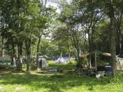 滝沢牧場キャンプ場のフリーサイト