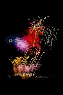 夜空を彩る花火・川崎市制記念多摩川花火大会