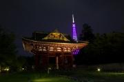 旧台徳院霊廟惣門と東京タワー