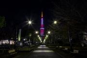 LEDでライトアップされた2月紅梅色の東京タワー