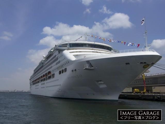 大桟橋に停泊するサン・プリンセスのフリー写真素材(無料)