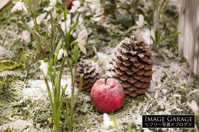 木の根元を彩る素敵なオーナメントのフリー写真素材(無料)