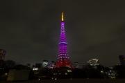 3月・桜色の東京タワー