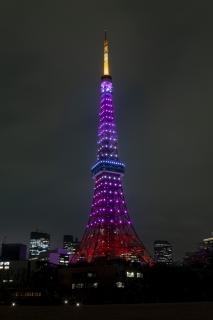 桜色の3月の東京タワー(縦)