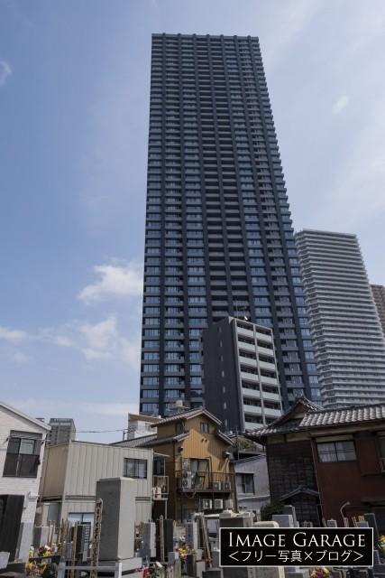 タワーマンション群の麓にある東福寺のフリー画像(無料写真素材)