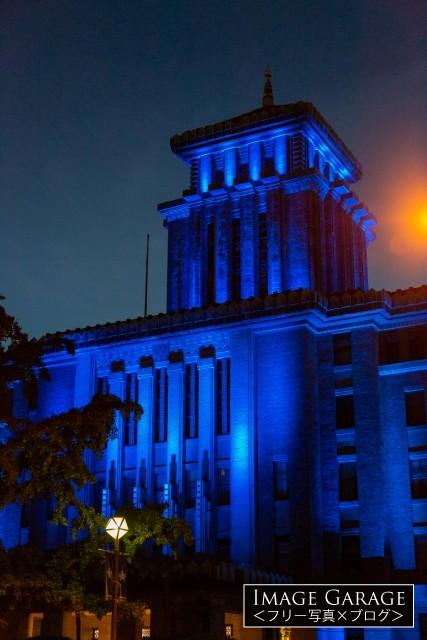 青いライトアップの神奈川県庁舎(縦)のフリー写真素材