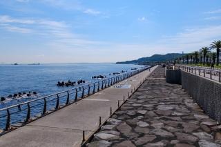 うみかぜの路・馬堀海岸の遊歩道