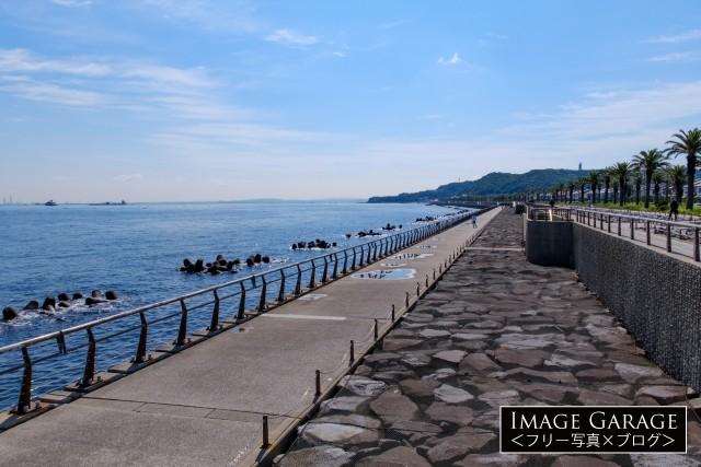 うみかぜの路・馬堀海岸の遊歩道のフリー写真素材