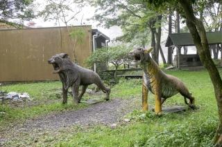 ふもとっぱらキャンプ場のライオンとトラの像