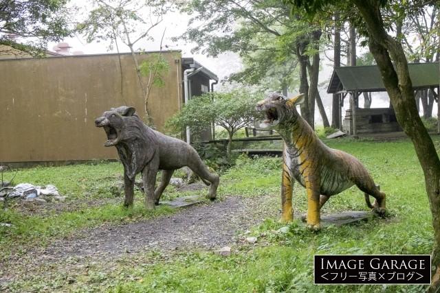 ふもとっぱらキャンプ場のライオンとトラの像のフリー写真素材