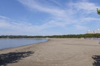 海の公園の砂浜
